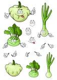 Cartoon onion, squash, kohlrabi vegetables Stock Image