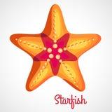 Cartoon orange starfish. Logo orange starfish cartoon style on a white background Royalty Free Stock Image