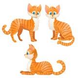 Cartoon orange tabby cat set Stock Photo