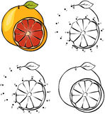 Cartoon orange. Vector illustration. Coloring and dot to dot gam Stock Photo