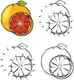Cartoon orange. Vector illustration. Coloring and dot to dot gam Stock Photo