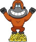 Cartoon Orangutan Bananas Royalty Free Stock Photography
