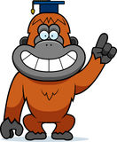 Cartoon Orangutan Professor Stock Photo