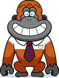 Cartoon Orangutan Tie Royalty Free Stock Image