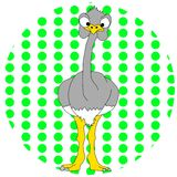 Cartoon Ostrich Royalty Free Stock Image