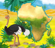 Cartoon ostrich with continent map Royalty Free Stock Photos