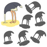 Cartoon ostrich. Find the right shadow image. Educational games for kids. Cartoon ostrich Stock Photography