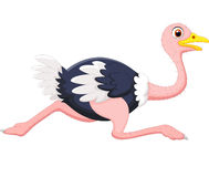 Cartoon ostrich running. Illustration of Cartoon ostrich running royalty free illustration