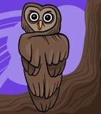 Cartoon owl Royalty Free Stock Photos