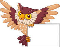 Cartoon owl bird flying holding blank sign Royalty Free Stock Photography