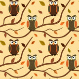 Cartoon owl on branch with autumn leaves seamless pattern background illustration Stock Photos