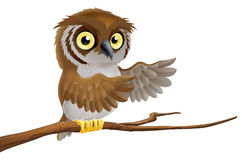 Cartoon owl on branch. An illustration of a cartoon owl on a tree branch pointing with its wing Royalty Free Stock Photos
