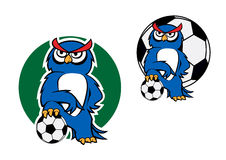 Cartoon owl character with football ball Stock Images