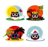 Cartoon owl during four seasons royalty free stock photos