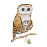 Cartoon owl mother covering owlet with wings sitting on tree branch hand-drawn.  Stock Photo