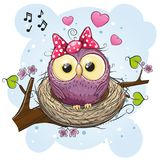 Cartoon Owl in a nest on a branch. Cute Cartoon Owl in a nest on a branch royalty free illustration