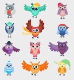 Cartoon owl night fly bird cartoon cute style vector set character different pose Royalty Free Stock Photography