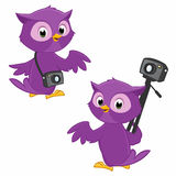 Cartoon Owl Photographer. Illustration of turning around owl photographer symbolizing  panoramic 360 degree photography Royalty Free Stock Photos