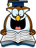 Cartoon Owl Reading Stock Photos