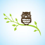 Cartoon owl sitting on green branch Stock Photography
