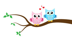 Cartoon owl on a tree. Vector illustration Stock Photos