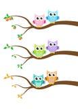 Cartoon owl on a tree Stock Photos
