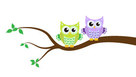 Cartoon owl on a tree. Vector illustration Stock Image