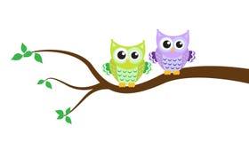Cartoon owl on a tree Stock Image