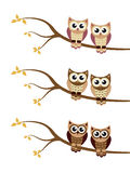 Cartoon owl on a tree. Vector illustration Royalty Free Stock Images