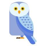 Cartoon owl vector Stock Images
