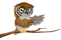 Cartoon owl wearing glasses Stock Photography