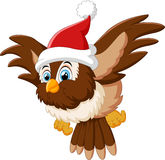 Cartoon owl wearing santa cap Stock Photography