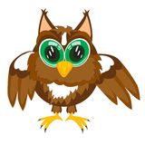 Cartoon of the owl on white Royalty Free Stock Photo