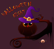 Cartoon owl in witch hat sitting on the branch. Halloween icon. Royalty Free Stock Photo