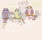 Cartoon owls Royalty Free Stock Photo