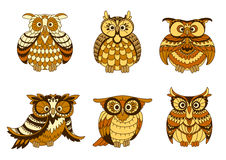 Cartoon owls with brown and orange plumage Royalty Free Stock Photos