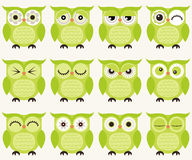 Cartoon owls illustration. With different facial expressions Vector Illustration