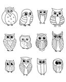 Cartoon owls and owlets Stock Image