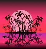 Cartoon palm tree Stock Image
