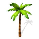 Cartoon Palm Tree Royalty Free Stock Photography