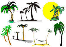 Cartoon palm tree Royalty Free Stock Image