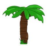 Cartoon palm tree Stock Photo