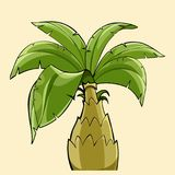 Cartoon palm tree with a thick trunk Royalty Free Stock Photos