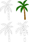 Cartoon palm tree. Vector illustration. Coloring and dot to dot Stock Photography
