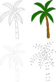 Cartoon palm tree. Vector illustration. Dot to dot game for kids Stock Photo