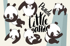 Cartoon panda bear set with lettering Royalty Free Stock Photo