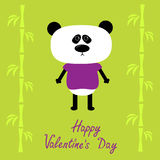 Cartoon panda boy and bamboo. Happy Valentines Day Royalty Free Stock Photography