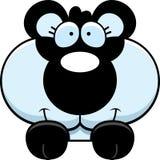Cartoon Panda Cub Peeking Royalty Free Stock Photo