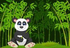 Cartoon panda in the jungle bamboo Royalty Free Stock Photos