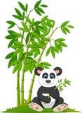 Cartoon panda sitting and eating bamboo Royalty Free Stock Images